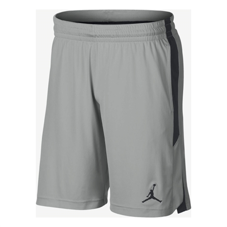 Jordan Alpha Dry Knit Shorts